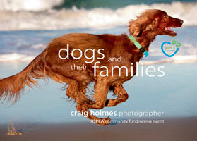 Dogs and Their Families